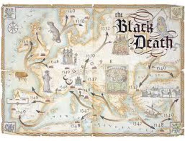 The Black Death: Rats/Fleas