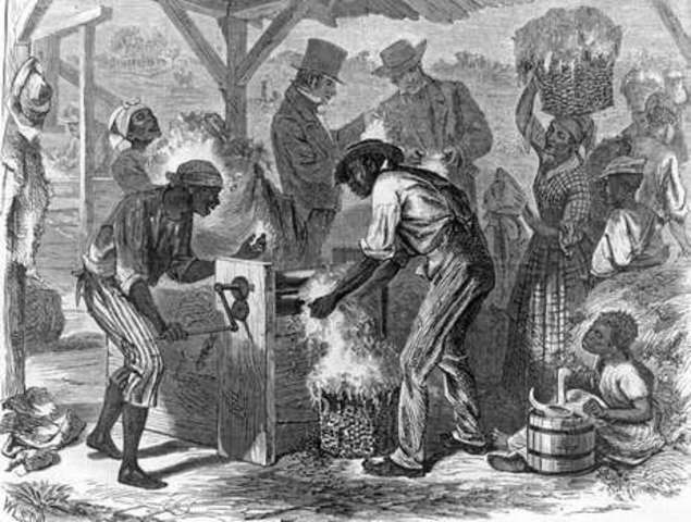 Slavery: Cotton Gin
