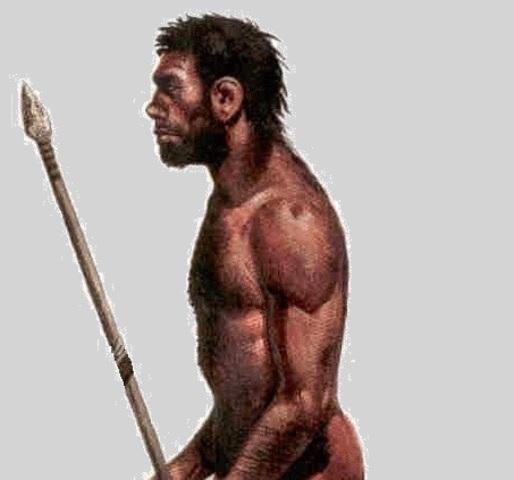 Aparición del Homo Sapiens