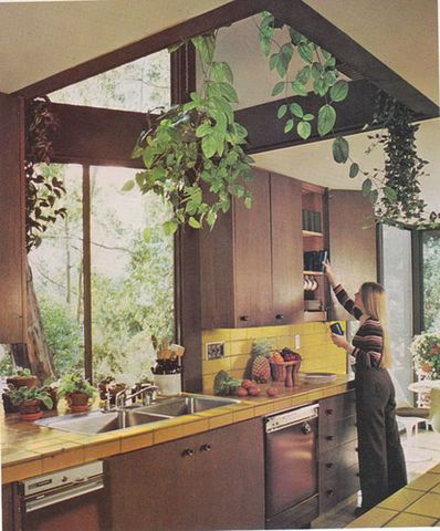 eco houses - architecture