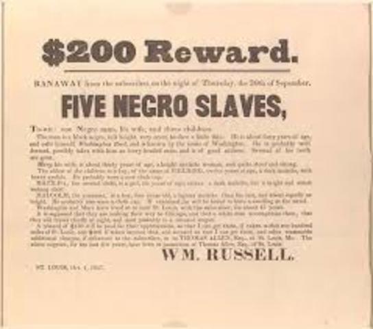 Twenty Negro Law