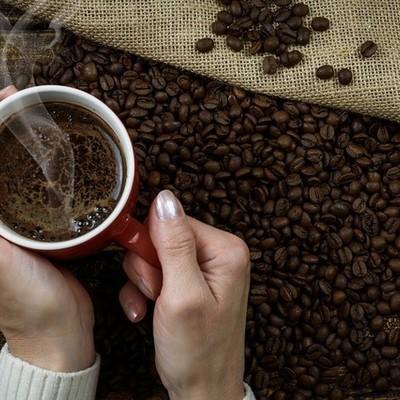 Desarrollo de la Industria Cafetalera en Veracruz timeline