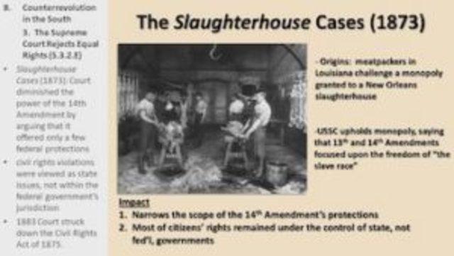 Phase 3 Slaughterhouse Cases