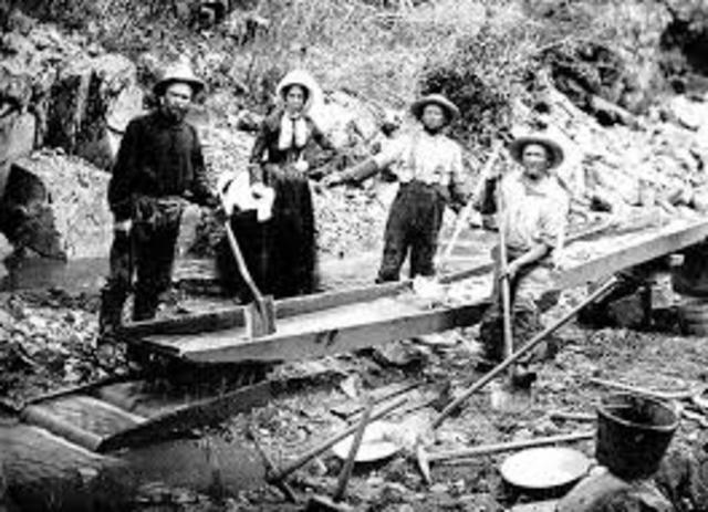 Mass Migration of California Gold Rush