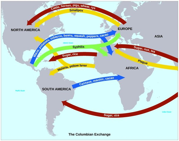 Image result for diseases of the columbian exchange