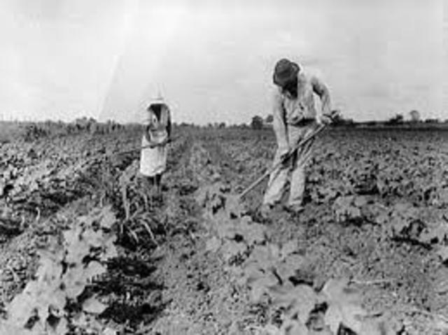 Tenant Farmers