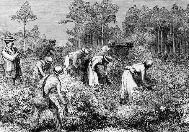 Slavery: Gradualism