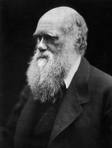 Darwins evolusjonsteori