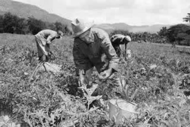 Segunda Ley de Reforma Agraria