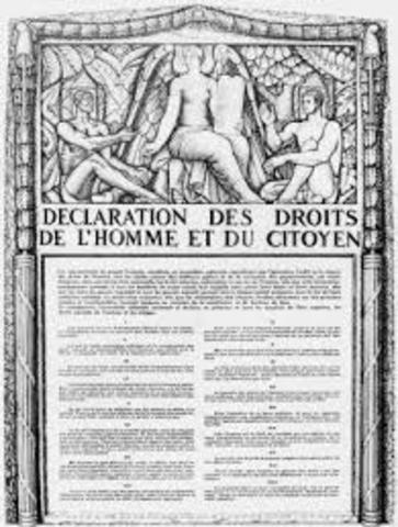 DECLARACION DE LOS DERECHOS DEL HOMBRE.