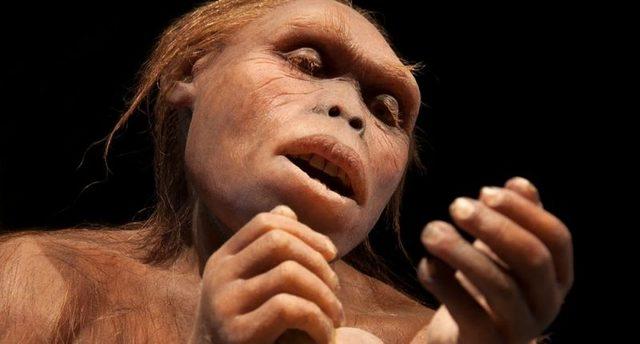 Australopithecus (hace 3m.a)
