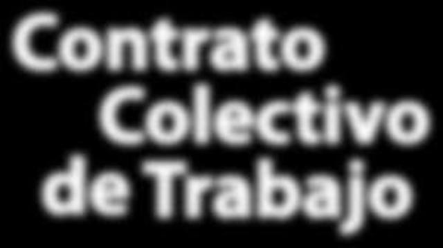 Surge el Contrato Colectivo (Holanda)