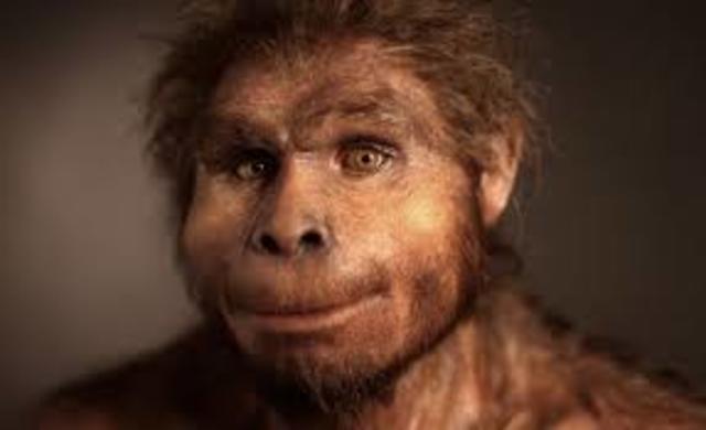 Homo erectus(1.2 millones de años)