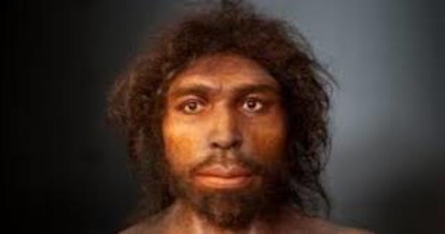Homo antecessor (8 millones de años)