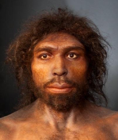 Homo antecessor (hace 800.000 años)