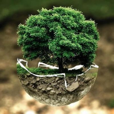 Fundamentos de la Sustentabilidad timeline