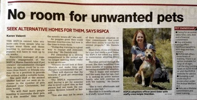 "RSPCA WA ~ ""We have no more room"""