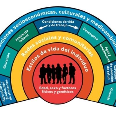 La Salud y sus Determinantes Sociales timeline