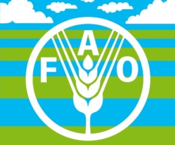 Sistema FAO