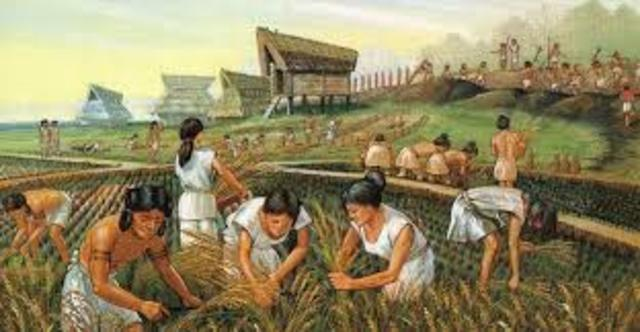 Neolítico. Nueva Edad de Piedra.