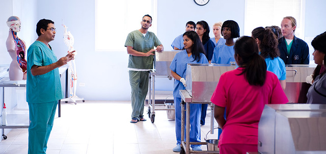 Pre-Medical Program