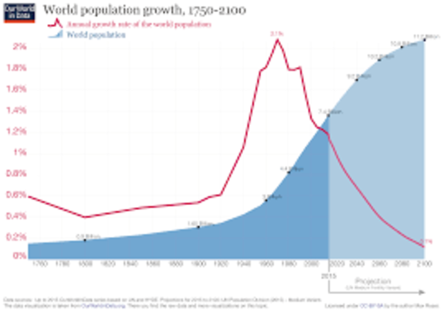 World Population Reaches 7 Billion Inhabitants