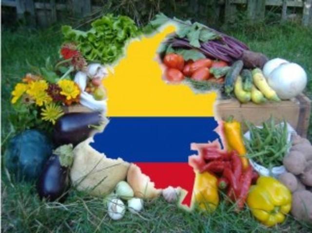 COLOMBIA: Primer Plan de Alimentos para todo el Territorio Nacional