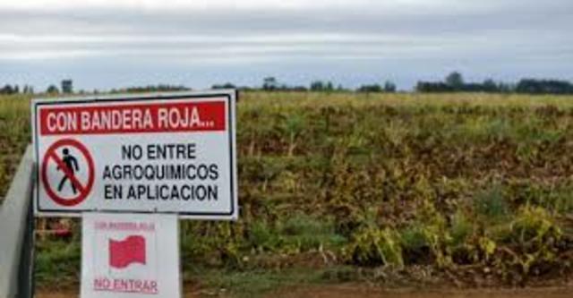 Mejora de rendimiento agroindustria