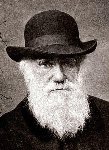 Teoría de Evolución