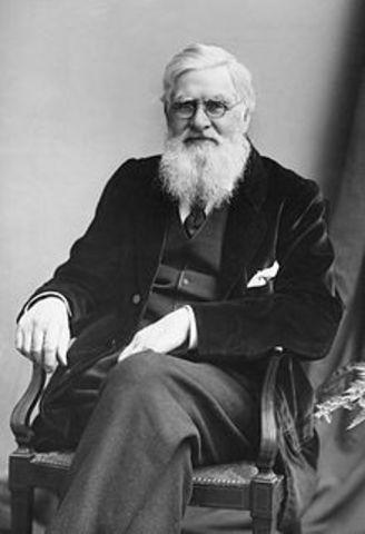 Charles Darwin (1809-1882) y Alfred Wallace (1823-1913).