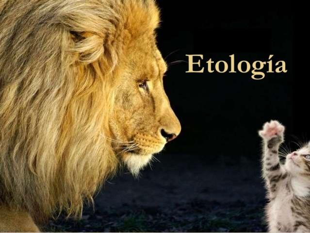 Etología como ciencia.