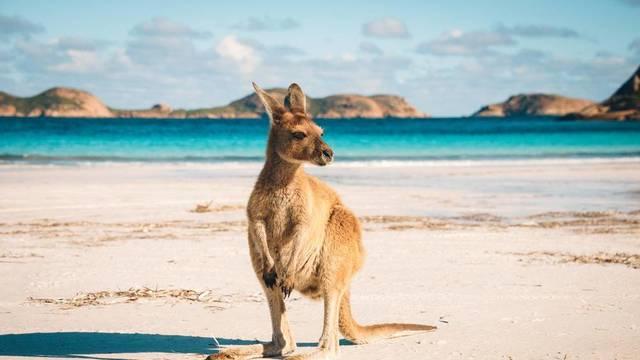 Austraalia liigub Põhja