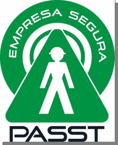 2002 lineamientos generales para el PASST