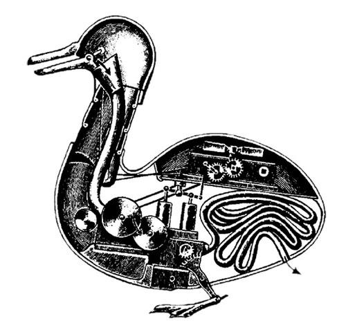 Пищеварительная утка