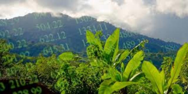 Sostenibilidad ambiental del capital natural
