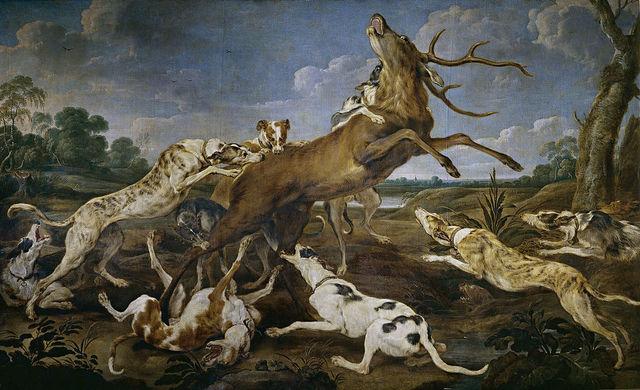Prehistoria - Primeros perros domesticos.