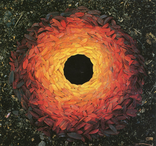 Rowan leaves laid around a hole -  Andy GOLDSWORTHY