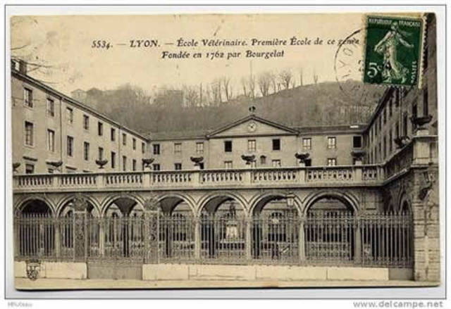 Primera escuela de veterinaria.