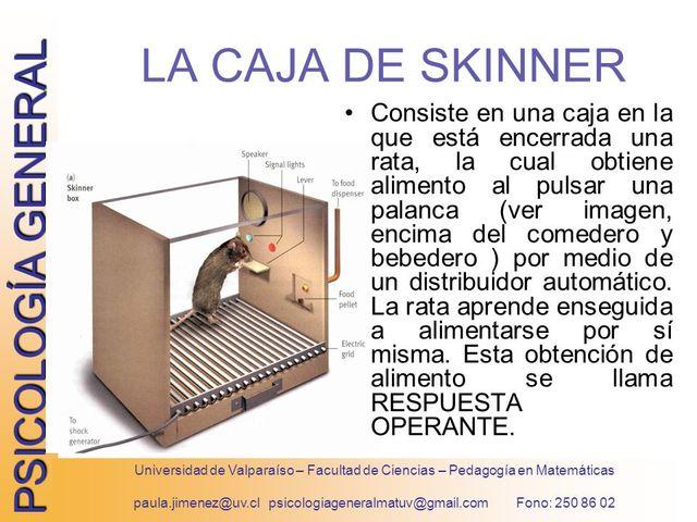 El Condicionamiento Operante - (Caja Negra de Skinner)