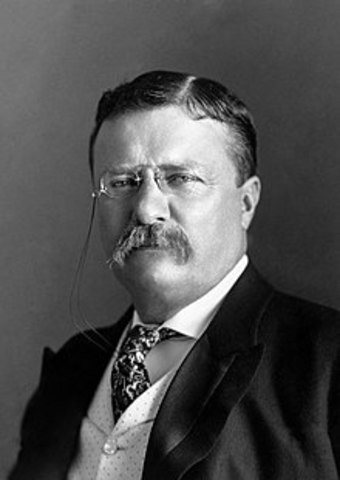Theodore Roosevelt was elected president.