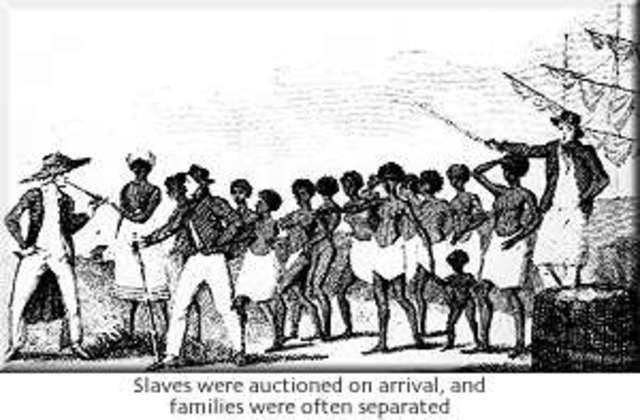 Slaves introduced to the Caribbean settlements