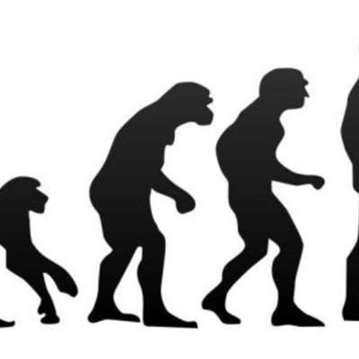 evolució dels humínids timeline