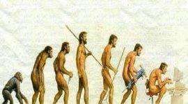 Evolució Home timeline
