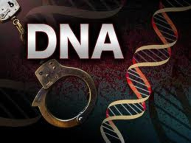 DNA Fingerprinting Applied to Criminal Cases