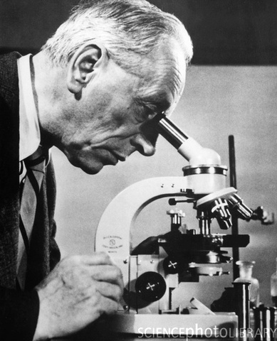 Microscope du  Frits Zernike