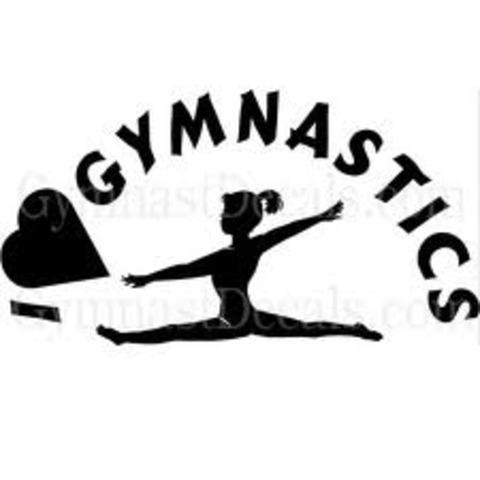 joined gymnastics