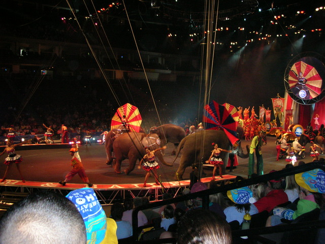 My First Circus!