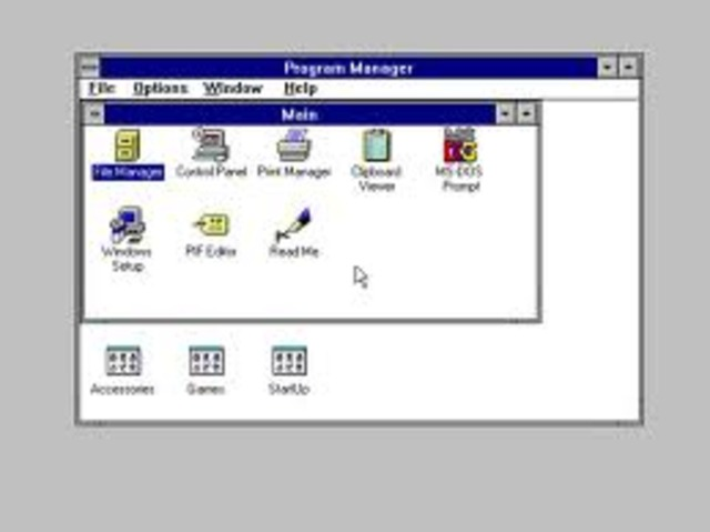 WINDOWS 3X