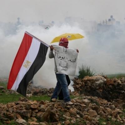 The 2011 Egypt Rebellion timeline