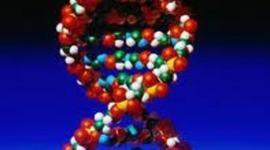 DNA THROUGH HISTORY... timeline